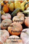 Apples! Leaves! Pumpkins!